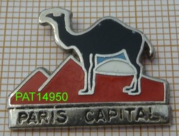 PARIS CAPITAL REVUE MAGAZINE   DROMADAIRE  PYRAMIDE En ZAMAC - Medias