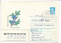 Soviet Stationery / Plant Shrub Bilberry Blueberry Vaccinium Uliginosum - 7 July 1990 Ežerėlis, Lithuania - Lithuania