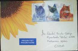 O) 2000 POLAND, CATS- PRIORITY - 1944-.... Republic