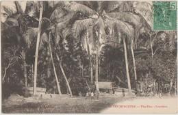 CPA VIETNAM INDOCHINE COCHINCHINE THU DUC Cocotiers 1909 - Vietnam