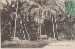 CPA VIETNAM INDOCHINE COCHINCHINE THU DUC Cocotiers 1909 - Viêt-Nam