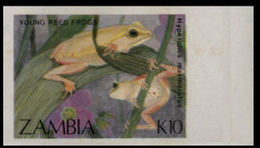 ZAMBIA 1989 Young Reed Frog K10 MARG.IMPERF - Zambia (1965-...)