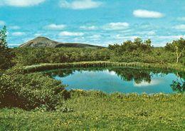 1 AK Island Iceland * Die Slutnes Insel Im See Mývatn - Dieser See Liegt Im Norden Von Island * - Island