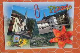 PINZOLO CARTOLINA 2005 - Italia