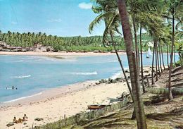 1 AK Brasilien * Der Strand Pirangi Bei Natal Im Bundesstaat Rio Grande Do Norte * - Natal