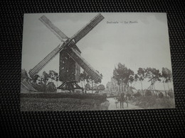 Dadizeele  Dadizele Le Moulin  ( Molen )   Oorlogsuitgave - Moorslede