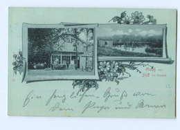 U710-2057/ Silk Bei Reinbek Niemann`s Gatshof Mondschein AK 1899 - Allemagne