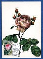 Carte   / Roses De France / Orléans / 6 Septembre 1962 - 1960-69