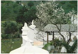 Entier Postaux De Tourisme - Alcantarilha - Typical House - (Algarve) - Portugal - Postal Stationery