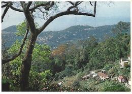 Entier Postaux De Tourisme - Freguesia Do Monte - Landscape - (Madeira) - Portugal - Postal Stationery