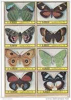 Ajman 1972,Butterflies 8 Stamps Complete Set MNH ,scarce Set- Reduced Price- SKRILL PAY ONLY - Ajman