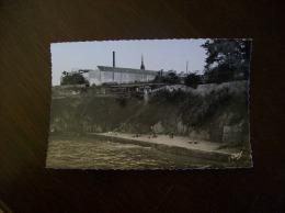 Carte Postale Ancienne De Douarnenez: PLage Des Dames - Douarnenez