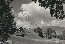 Braunwald  (FH049 - Suisse