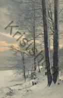 Unknown - Unbekannt - Zoekplaatje  (FR-169 - Postcards