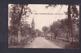 Vente Immediate Aillianville (52) Entree Du Pays ( Panneau Entree Agglomeration Ed. Brunot) - Francia