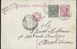 STORIA POSTALE REGNO - INTERO MICHETTI DA FARMACIA BOZZOLO DI BORGOLAVEZZARO 26.04.1923 PER ASCOLI PICENO - 1900-44 Victor Emmanuel III