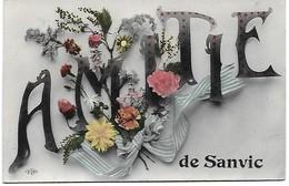 Amitié De Sanvic - Autres