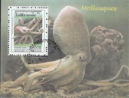 Cambogia 1999 Sc. 1845 Mollusques Molluschi Polipo Eledone Aldrovandi Cambodia Cambodge  Sheet Perf.CTO - Cambogia