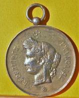 Médaille - Festival De MONISTROL/LOIRE 11 Juillet 1886 - Otros