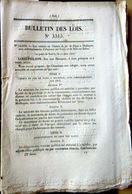 21 DIJON 68 MULHOUSE CHEMIN DE FER TRAIN CREATION DE LIGNES ET EMBRANCHEMENTS 1846 - Décrets & Lois