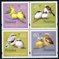 Pologne - Oiseaux : Passereaux 3355/3358 ** - Songbirds & Tree Dwellers