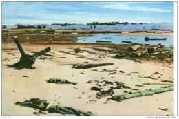 CPM Omaha Beach Après Les Premiers Combats - France