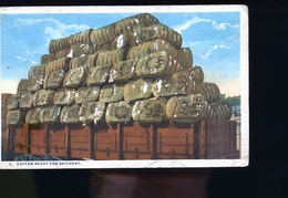 COTTON - Postcards