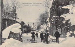 Riesengebirge Schreiberhau Winterbild Am Schenkenstein 1908 - Boehmen Und Maehren