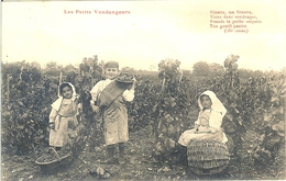 21 POSTEE A MEURSAULT LES PETITS VENDANGEURS NINETTE MA NINETTE VIENS DONC VENDANGER - Meursault