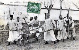 Algèrie. Zouaves - Algeria