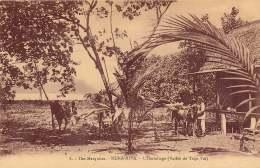 ILES MARQUISES  NUKA HIVA L'HERMITAGE (VALLEE DE TAIPI VAI) - French Polynesia