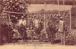 ILES SOUS LE VENT RAIATEA SECHAGE DU COPRAH - French Polynesia