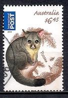 Australia 2013 - Fauna - Australian Bush Babies - Usados