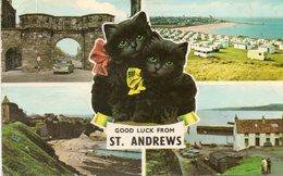 - GOOD LUCK FROM ST. ANDREWS - - Fife