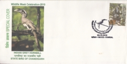 India  2010  Birds   Indian Grey Hornbill  Special Cover #  14203  D Inde Indien - Songbirds & Tree Dwellers
