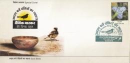 India  2015  Sparrows  Birds  Save Birds  Bhopal  Special Cover   #  14900    D Inde  Indien - Sparrows