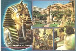 CARTOLINA CAIRO THE EGYPTIAN MUSEUM X ITALIA - Cairo