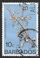 BARBADES 1974  -  YT  379  - Araignée  - Arachnis Maggie Oei -  Oblitéré - Barbados (1966-...)