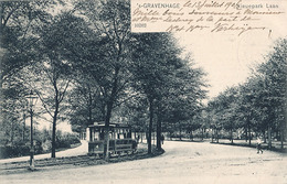 S-GRAVENHAGE - N° 10262 - NIEUPARK LAAN (TRAMWAY ) - Den Haag ('s-Gravenhage)