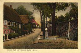 Luftkurort BURG I. Dithmarschen, Straßenszene (1910s) AK - Allemagne