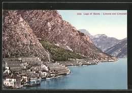 Cartolina Limone, Lago Di Garda, Con Limoneti - Altre Città