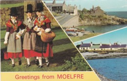 MOELFRE MULTI VIEW. WELSH LADIES - Anglesey