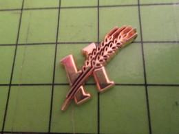 1318a Pin's Pins / Rare Et De Belle Qualité / AUTRES : LETTRE H MAJUSCULE ET EPIS DE BLE METAL JAUNE - Pin's