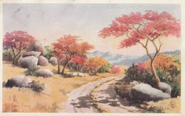 Rhodesia - Spring Colours On The Rhodesian Sandveld Art Joan Evans - Zimbabwe