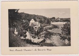 29  Port-manech  Le Bois Et La Plage - Autres Communes