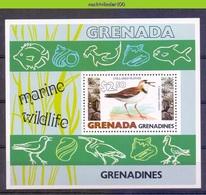 Mwe2656 FAUNA VOGELS VISSEN SCHELPEN BIRDS SHELLS FISH VÖGEL AVES OISEAUX GRENADA GRENADINES 1979 PF/MNH - Zangvogels