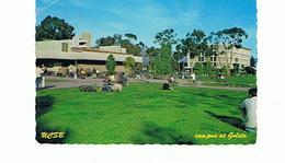 ETATS UNIS  SANTA BARBARA BETWEEN CLASSES UNIVERSITY 1981 - Santa Barbara