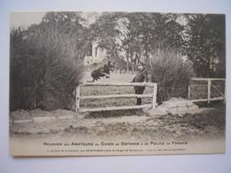 Le Saut De La Barrière Par Printemps Chien De Berger De Beauce - Hunde