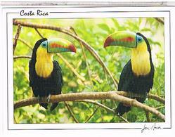 COSTA RICA TUCANES - Costa Rica
