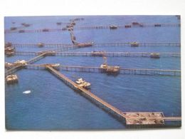 : Baku  /Azerbaijan   /  Port  / Port Installations - Azerbaïjan